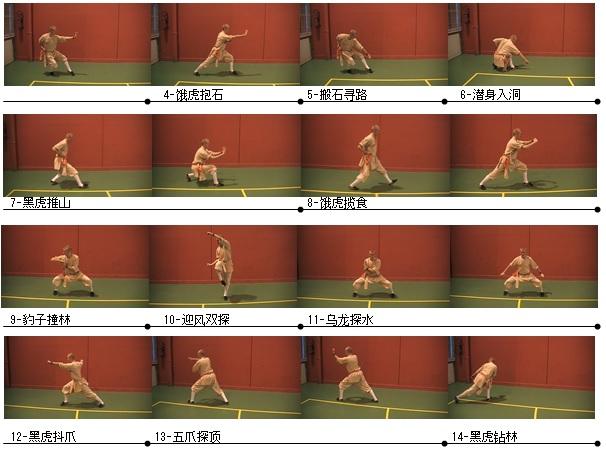 Planche Wu Xing Ba Fa