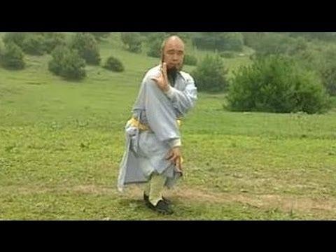 Position atypique de Qi Xing Quan
